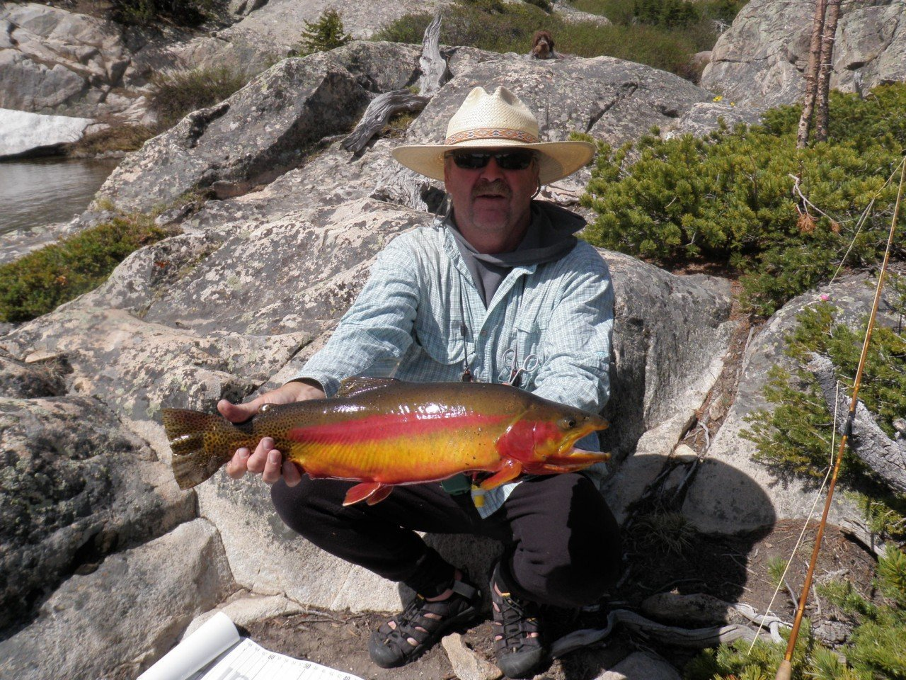 New local fishing guide wyoming fly fishing for Youtube trout fishing