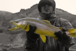 Wyoming fly fishing guide Dubois Jackson Lander Thermopolis Wyoming
