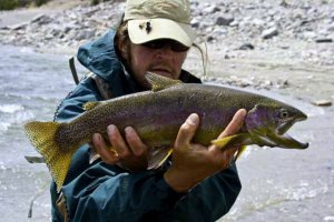 Dubois Wyoming Fly Fishing Guide