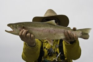 Wyoming fly fishing guides