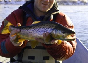 Wyoming Winter Fly Fishing Bighorn River