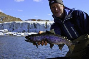 March Rainbows on the Bighorn River!