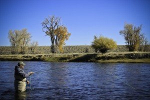 Bighorn & Green River Flows: Wind River Canyon Update