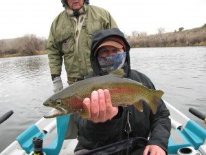 May Rainbow Trout Thermopolis Wyoming