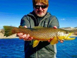 Bighorn River January Brown