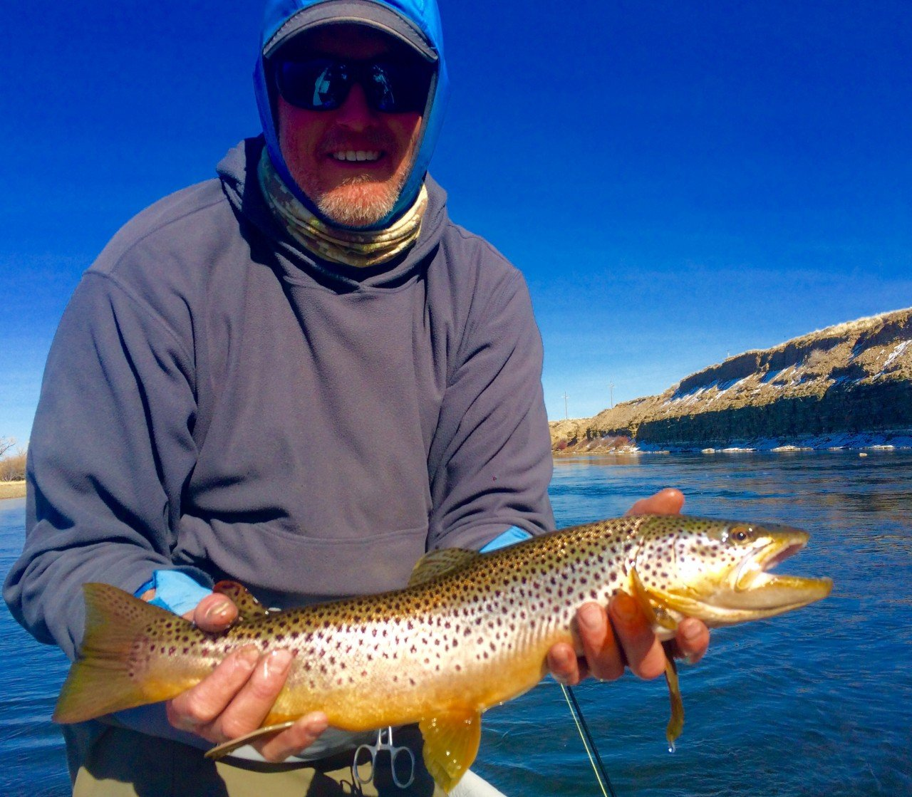 Green river bighorn river fishing reports dunoir fishing for Bighorn river fishing report