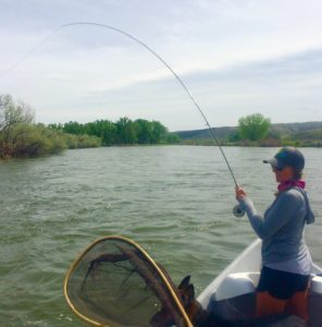Bighorn River Big Water