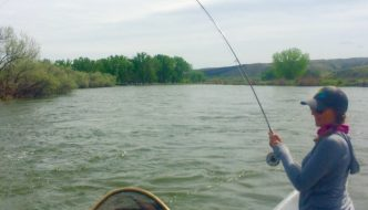 Bighorn River Big Water