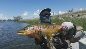 Green River Wyoming Brown