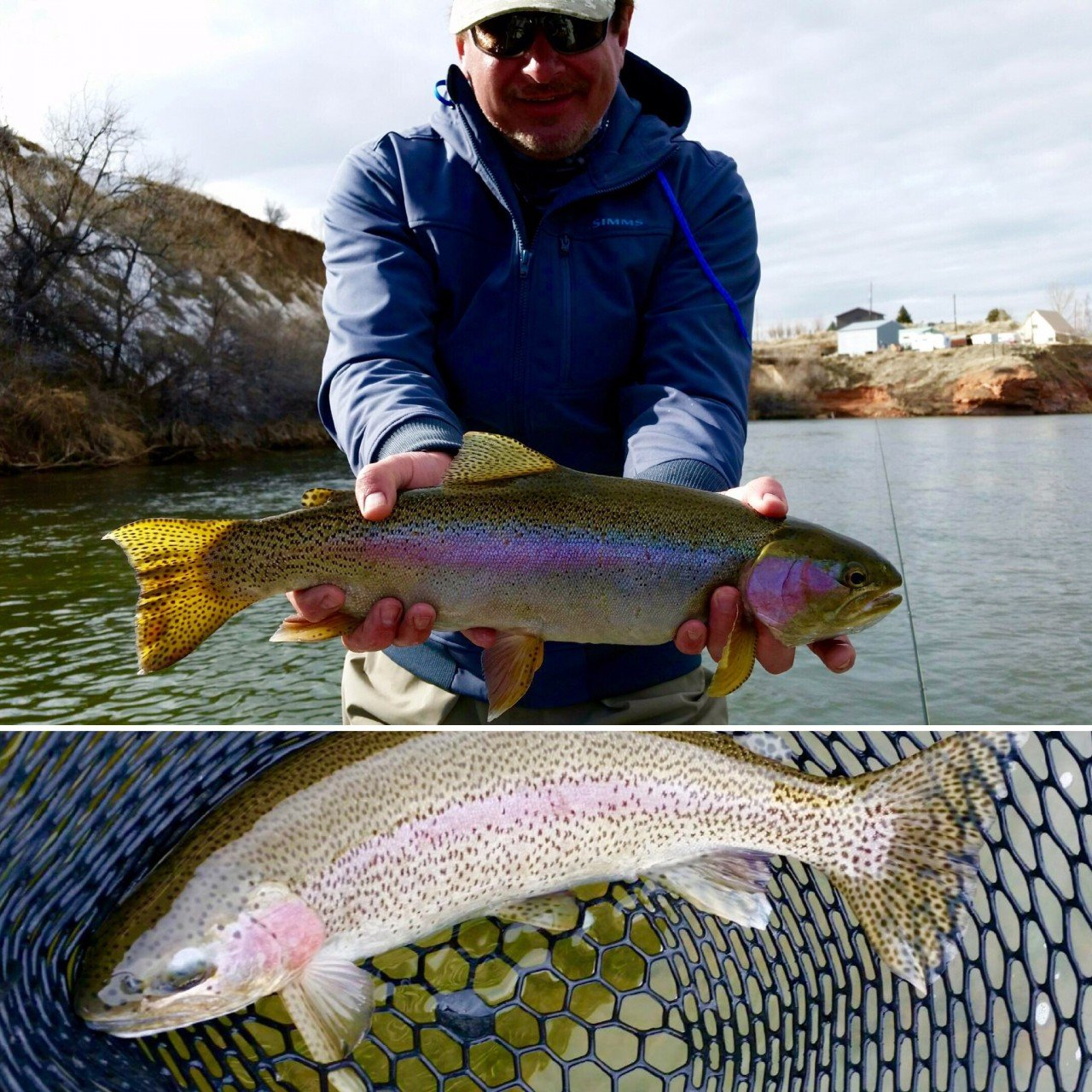 Bighorn river fishing report thermopolis wyoming for Bighorn river fishing