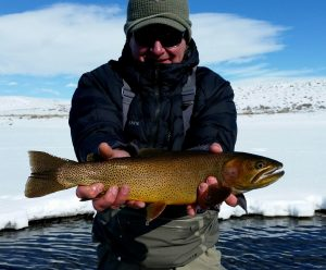 Wind river fishing report archives dunoir fishing adventures for Green river lake fishing report
