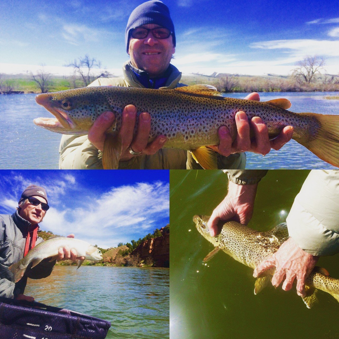 Bighorn green river fishing report spring water flows for Green river lake fishing report