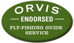 Orvis endorsed fly fishing guide service