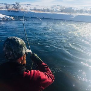 bighorn river fishing guide lander