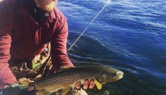 Bighorn River Fishing Report