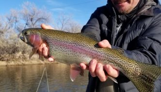 Lander Dubois Thermopolis Fishing Report Wyoming