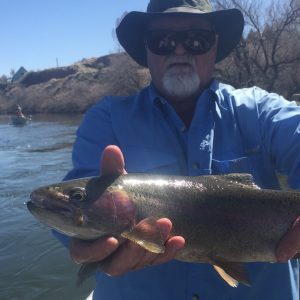 Bighorn River Fishing Guide Report Thermopolis Wyoming