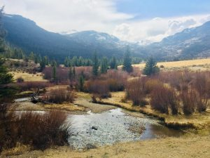 Wind River Fishing Report Dubois Wyoming