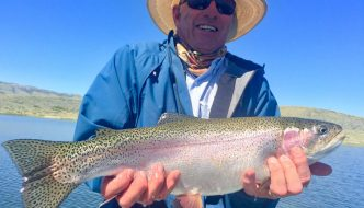 Wyoming Fly Fishing Damselfly Hatch Triassic Lake Guides