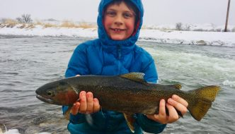 Winter Fly Fishing Bighorn and Wind River in Wyoming