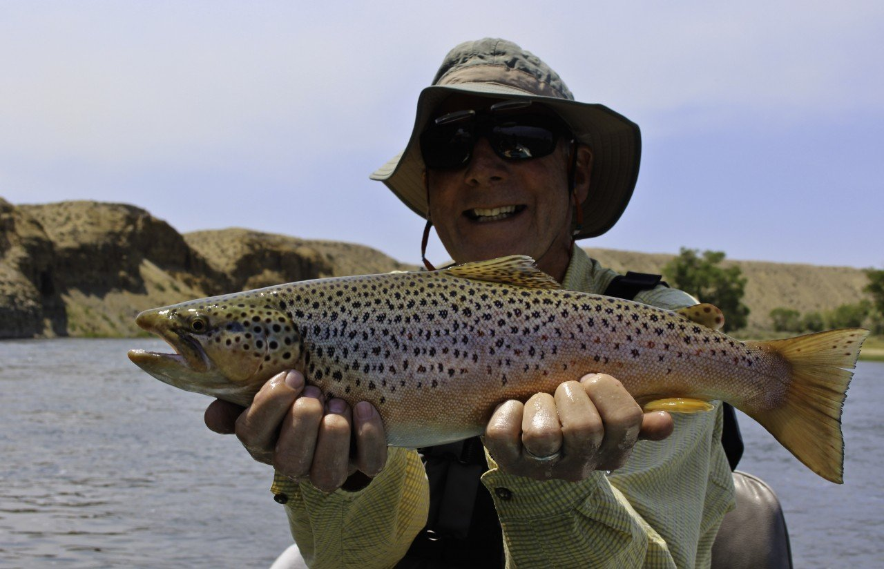 Brown Trout Heaven Green River Fly Fishing