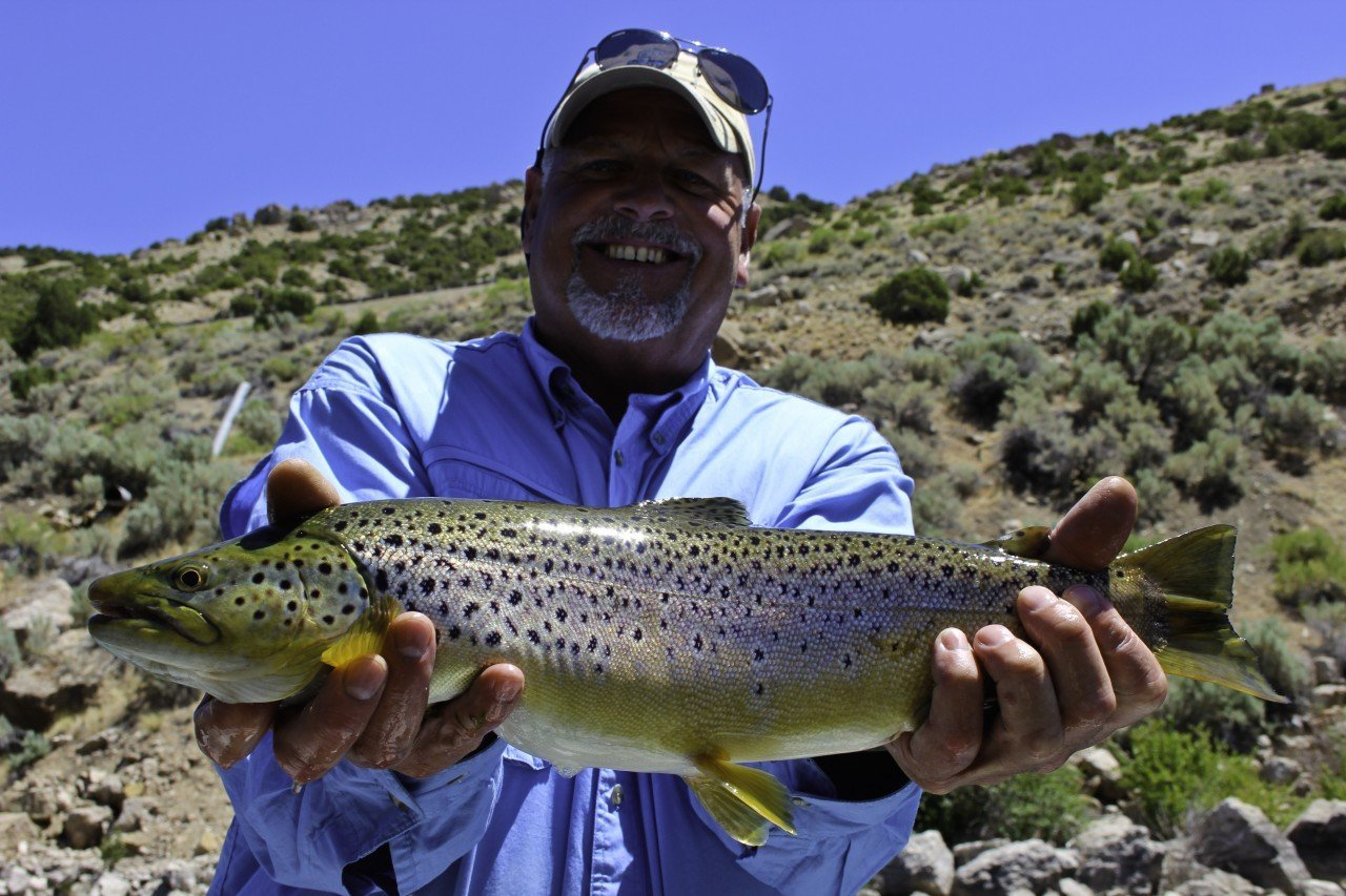 Stillwater Fly Fishing in Wind River Country