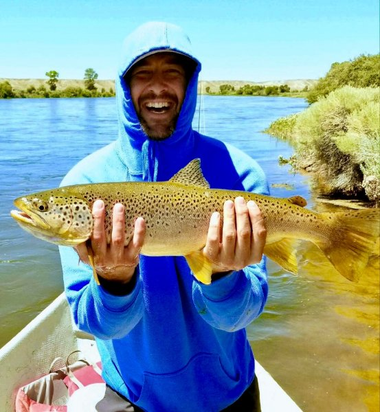 Green River Fontenelle Brown Trout Fishing