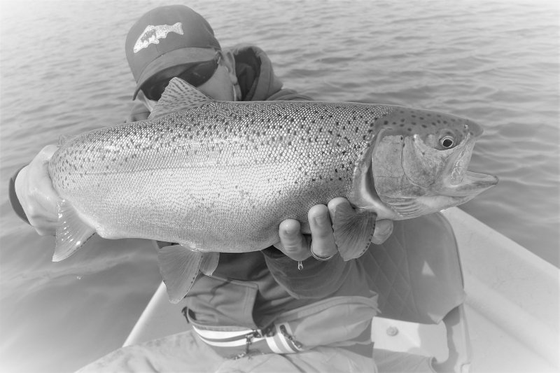 Wyoming Private Trophy Trout Fishing Triassic Lake Guides