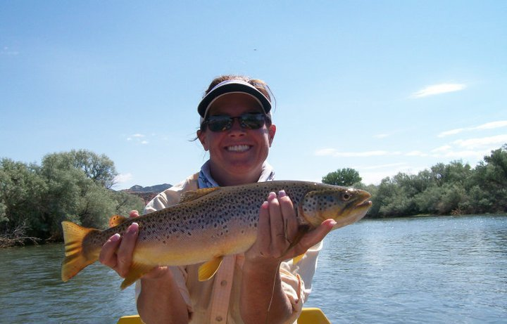 Summer Bighorn River Brown Trout Guides