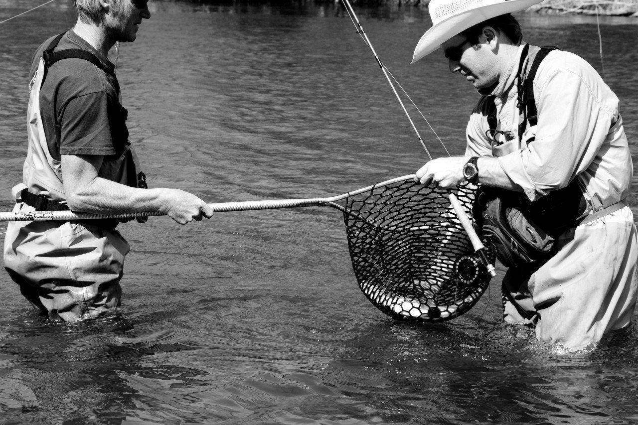 cowboyfish2_20110501_1956532094