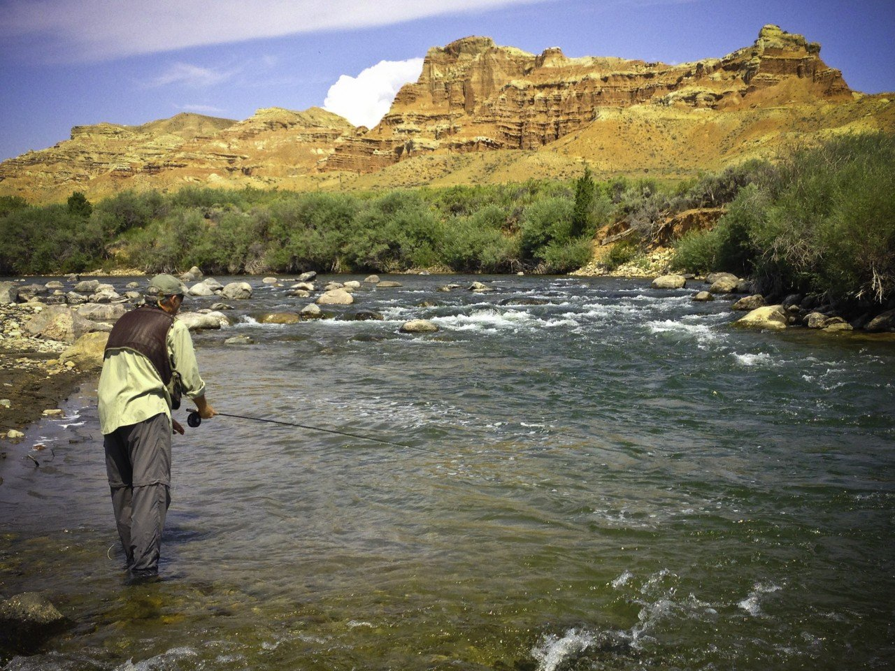 Wind River Fly Fishing Wade Trips