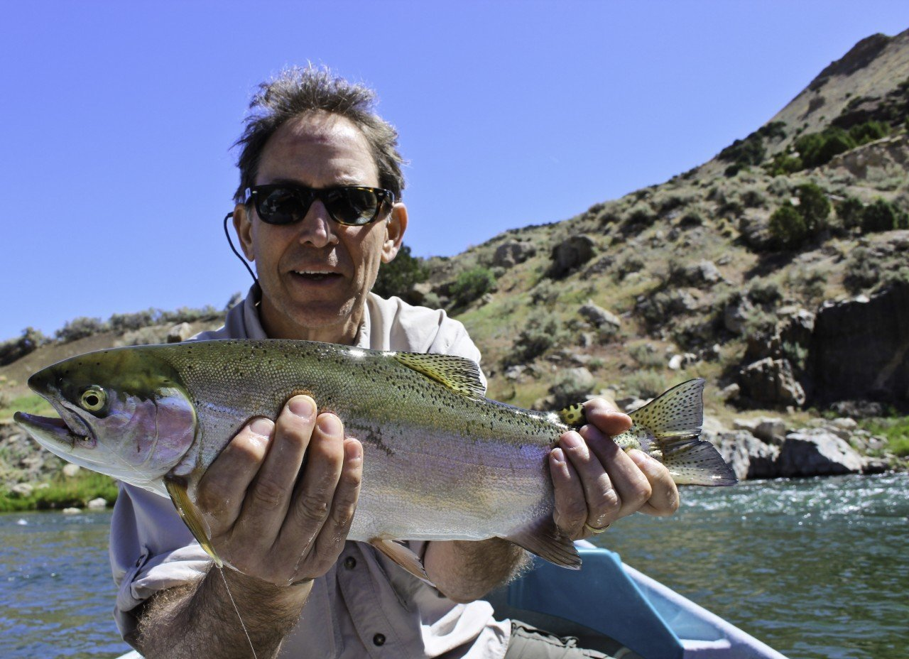 Wind River Rainbow Fly Fishing Trips