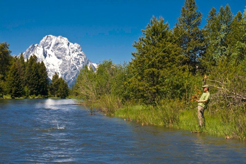 Snake River Flyfishing, Mount Moran, Grand Teton National Park
