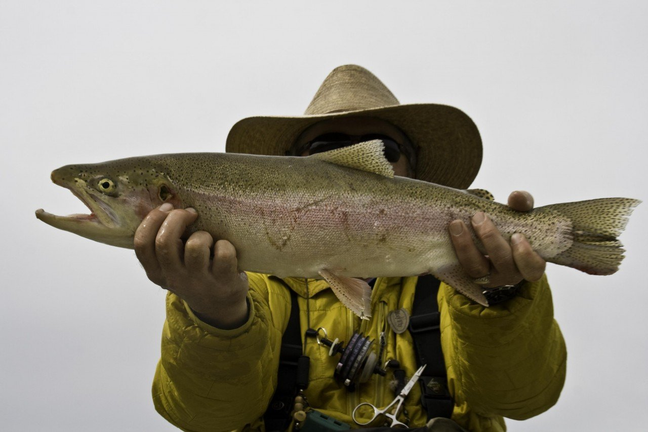 Cowboys and Rainbows Green River Fishing Guides