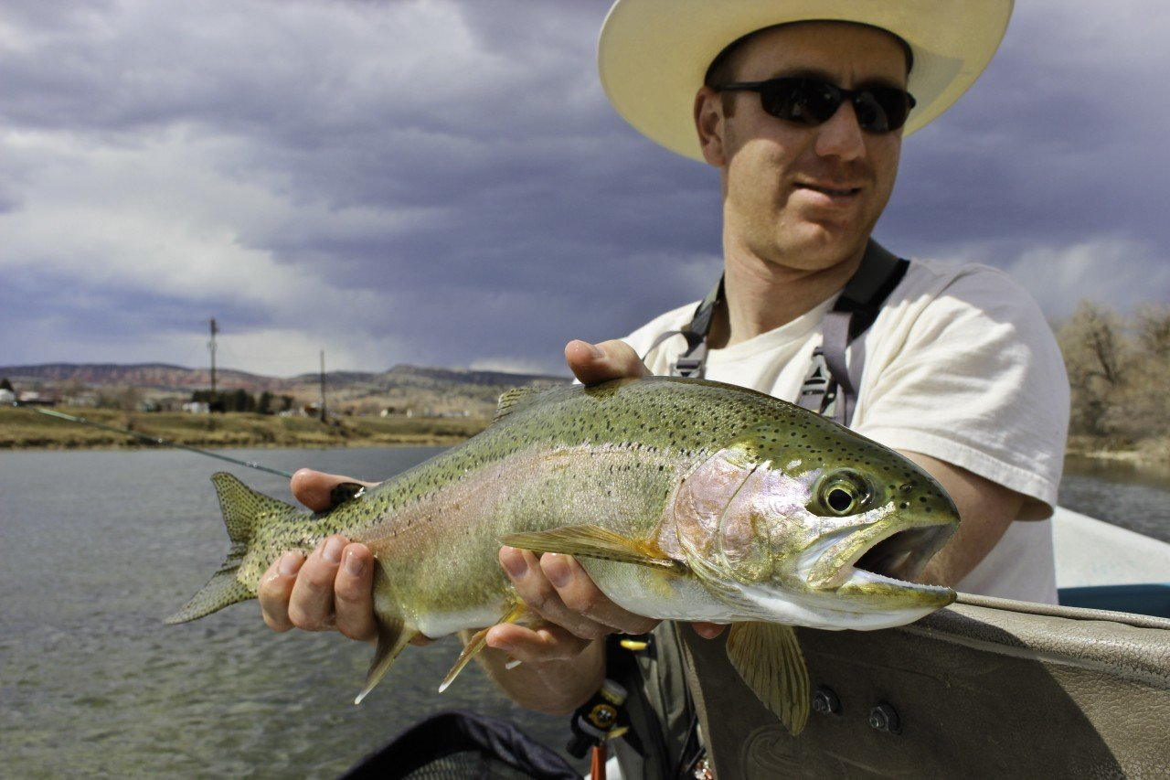 spring_rainbow_bighorn_river_wy_fly_fishing_1_20130827_1343132874