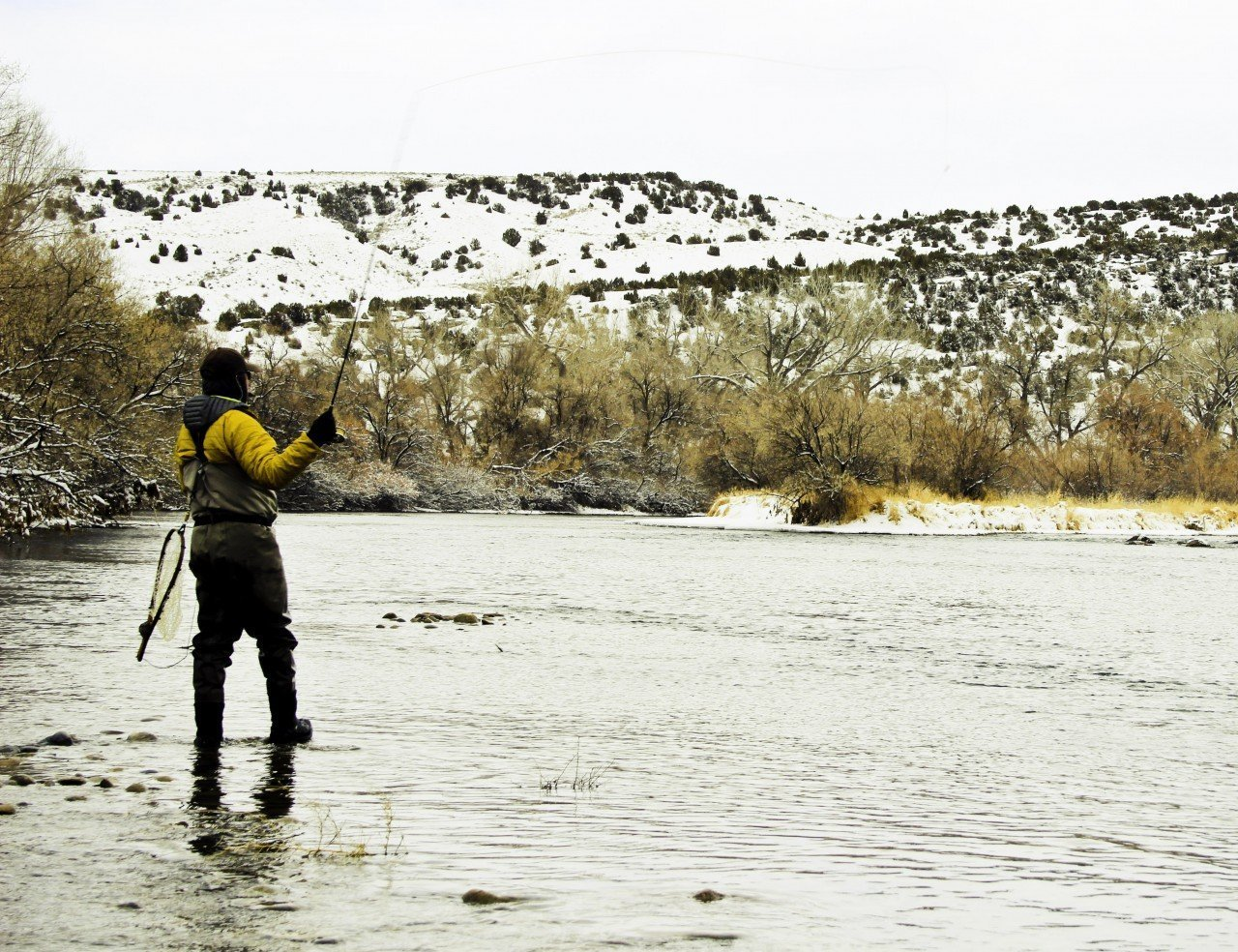 wyoming_winter_bighorn_fly_fishing_1_20130827_1832836367